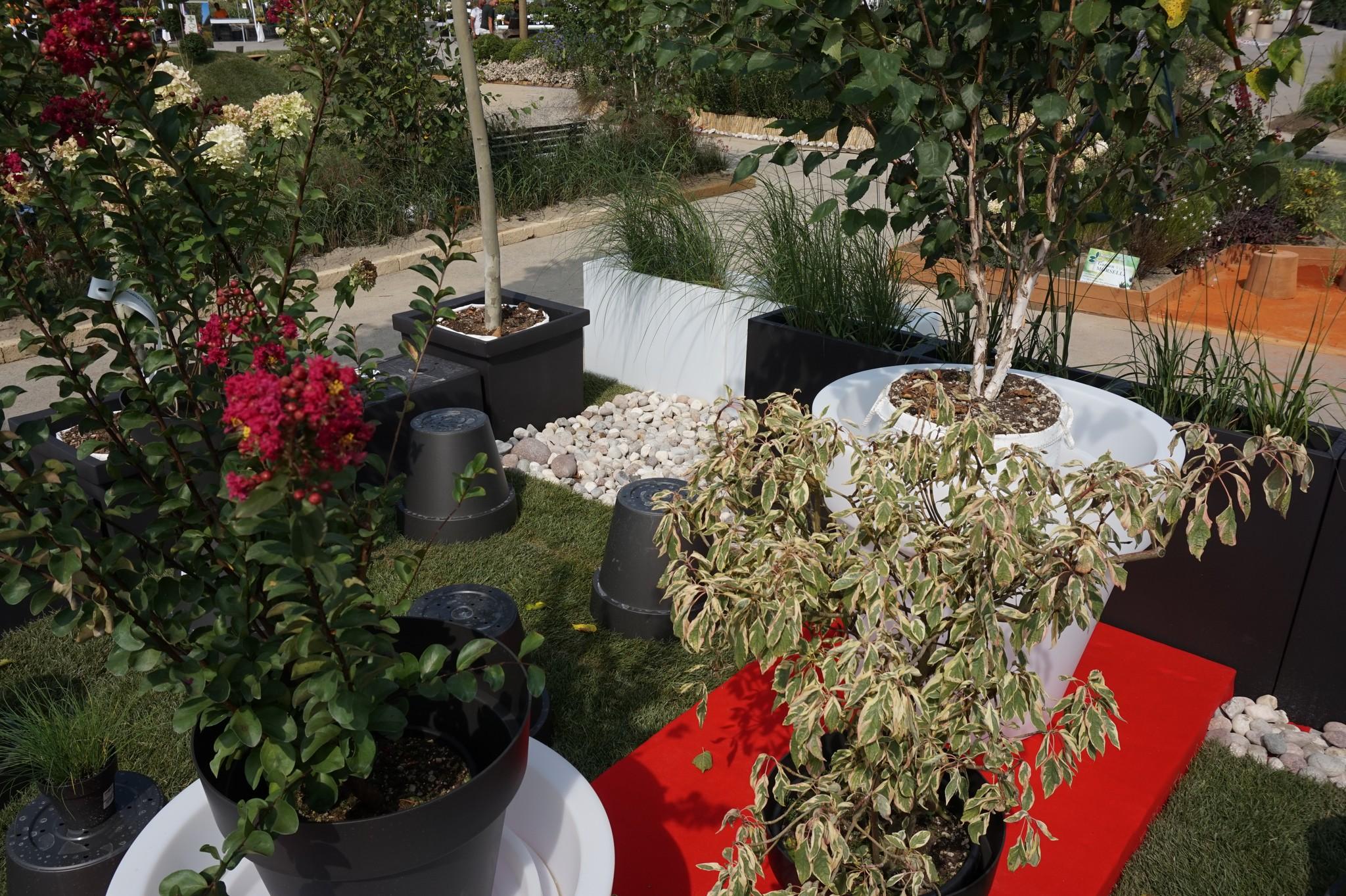Concorso giardini Verdeggiando_102 Fashion Green Parade (7GKW3) DM Landscape Marica Succi e Domenico Dipinto