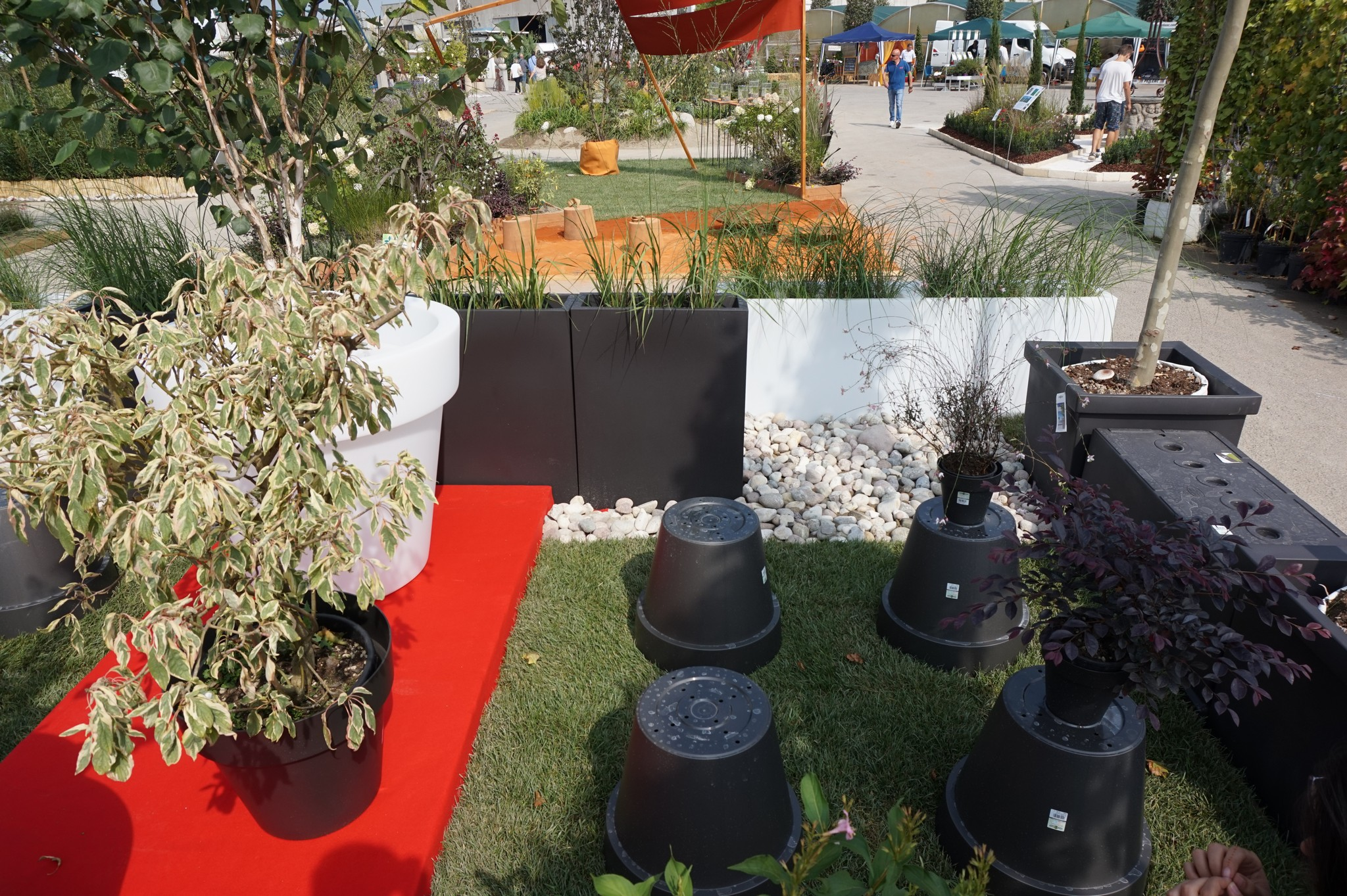 Concorso giardini Verdeggiando_104 Fashion Green Parade (7GKW3) DM Landscape Marica Succi e Domenico Dipinto