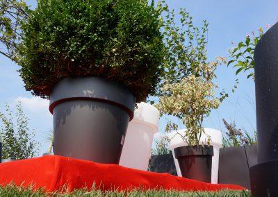 Concorso giardini Verdeggiando_107 Fashion Green Parade (7GKW3) DM Landscape Marica Succi e Domenico Dipinto