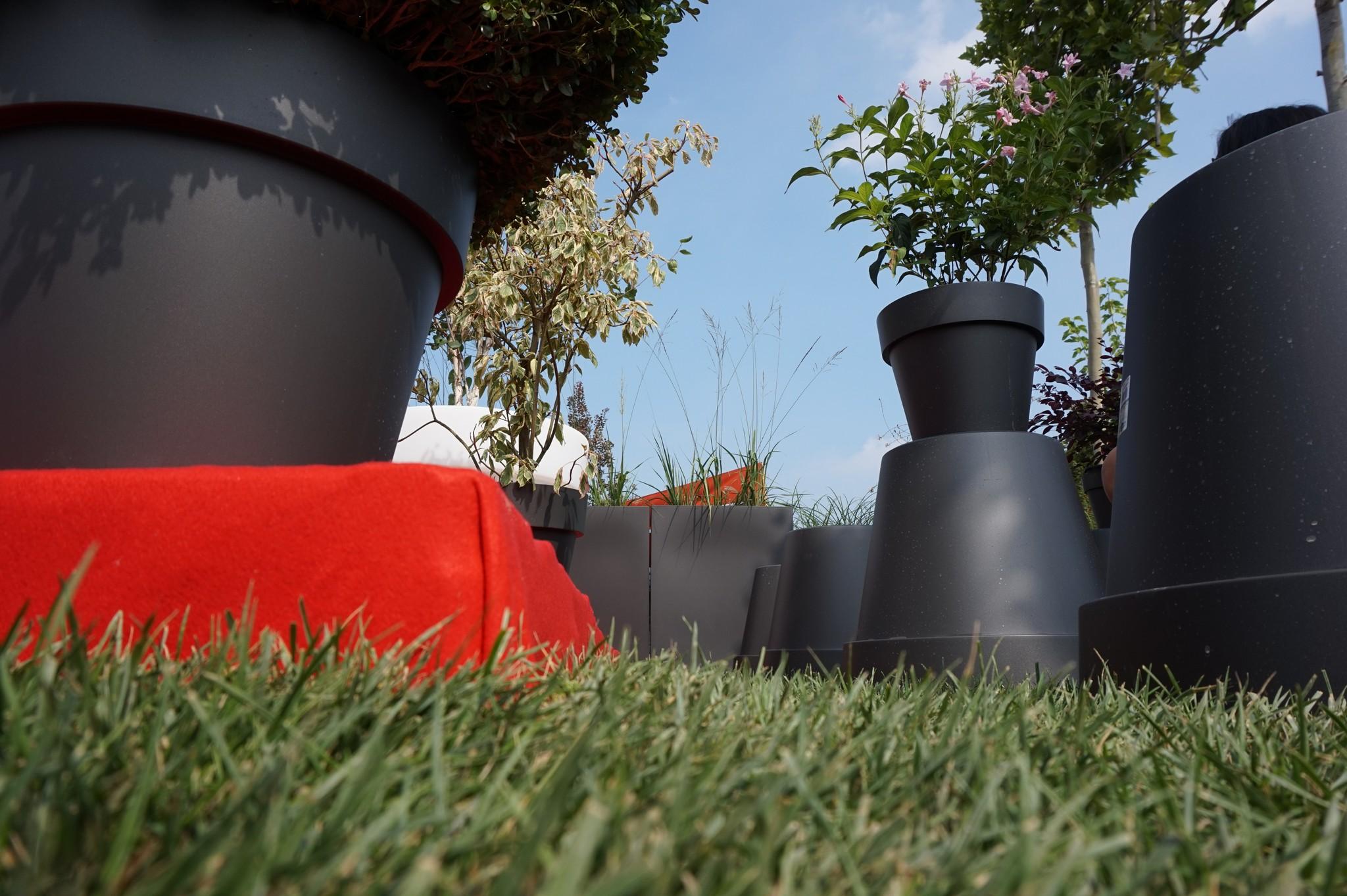 Concorso giardini Verdeggiando_109 Fashion Green Parade (7GKW3) DM Landscape Marica Succi e Domenico Dipinto