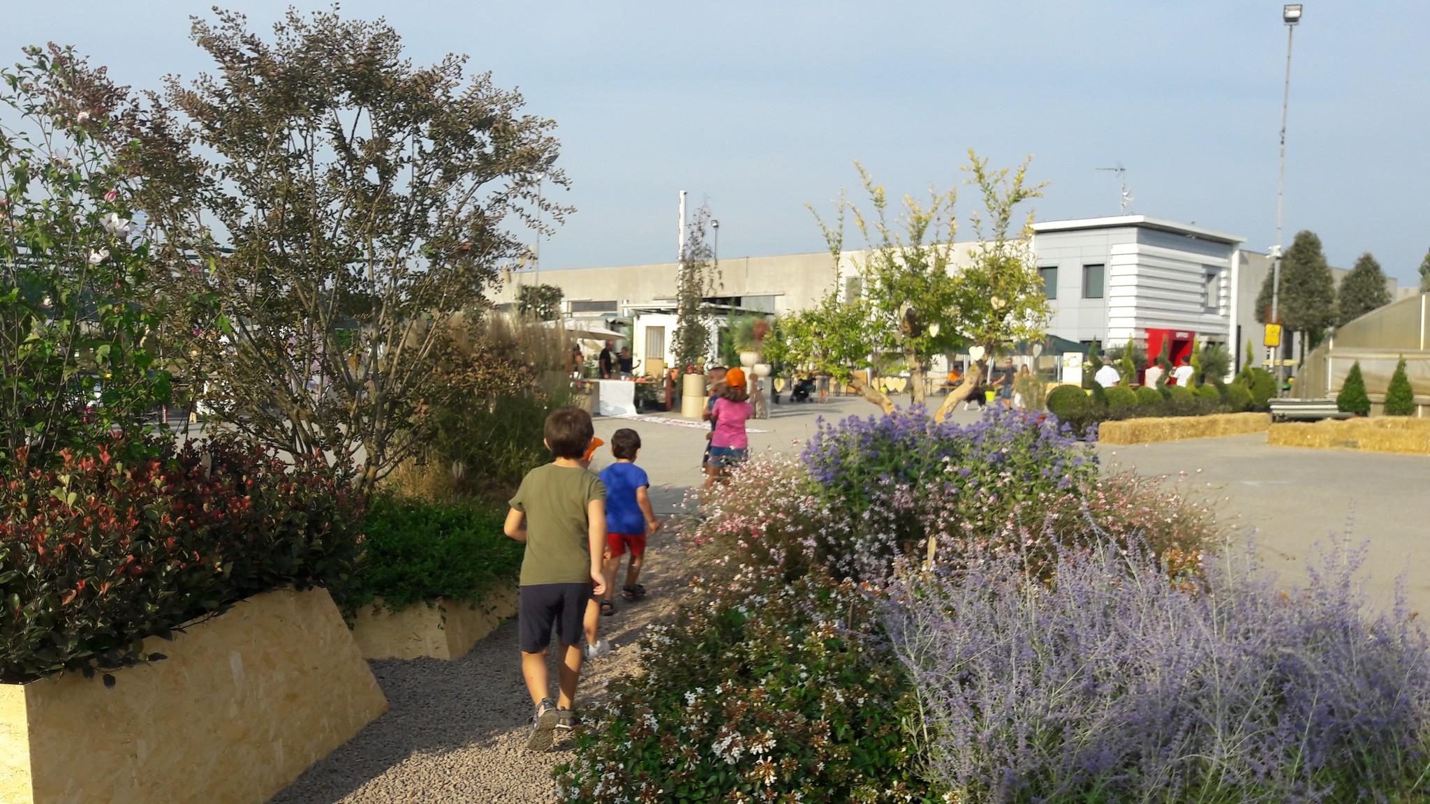 Concorso giardini Verdeggiando_114 Ode al giorno felice (ON78V) Ida Lia Russo