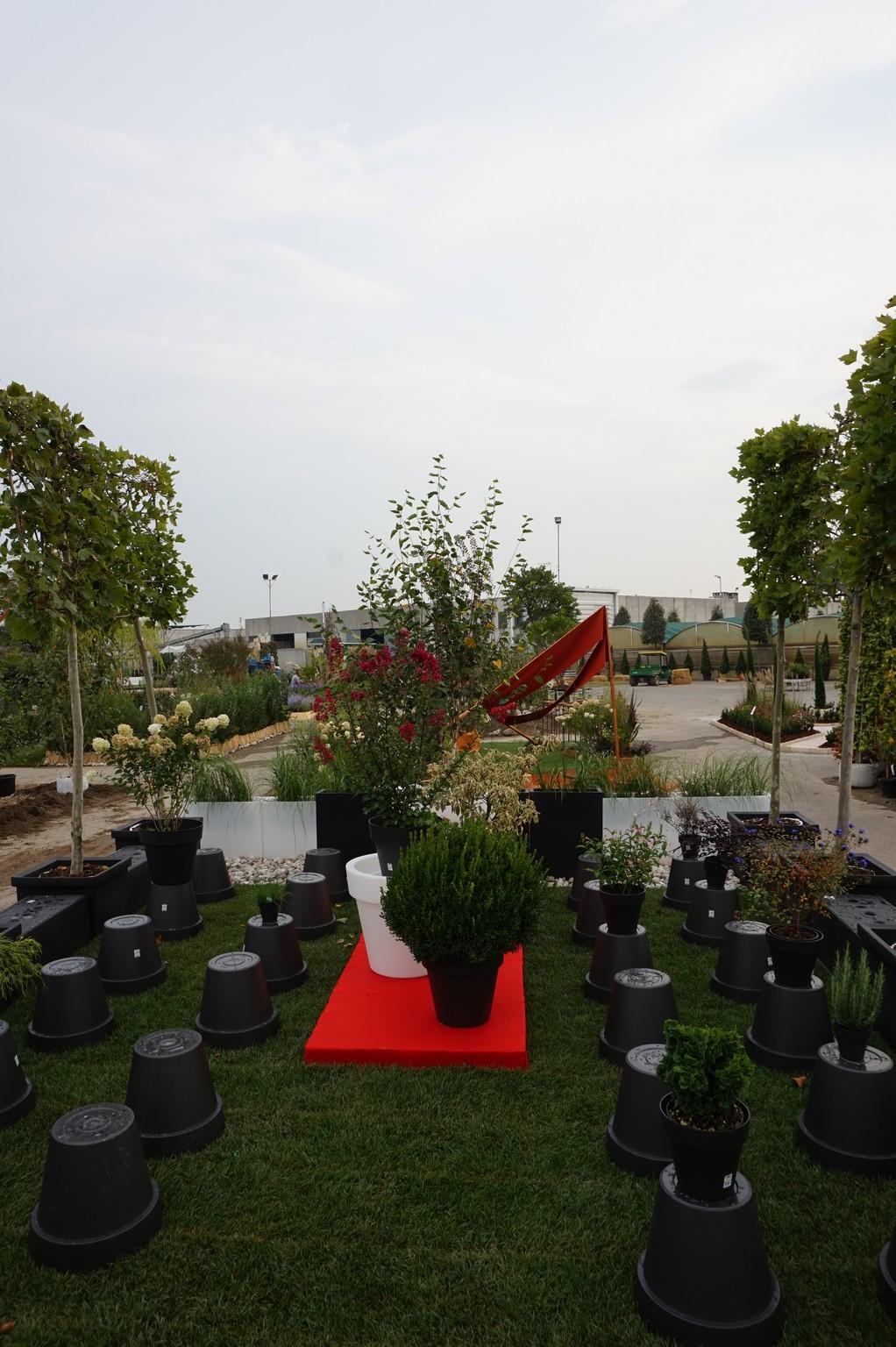 Concorso giardini Verdeggiando_118 Fashion Green Parade (7GKW3) DM Landscape Marica Succi e Domenico Dipinto