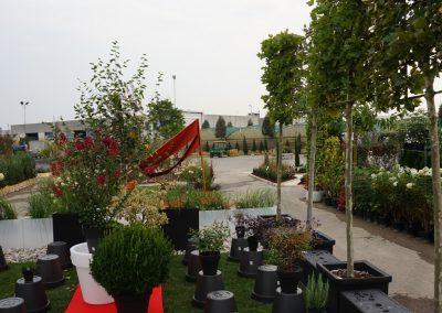 Concorso giardini Verdeggiando_119 Fashion Green Parade (7GKW3) DM Landscape Marica Succi e Domenico Dipinto