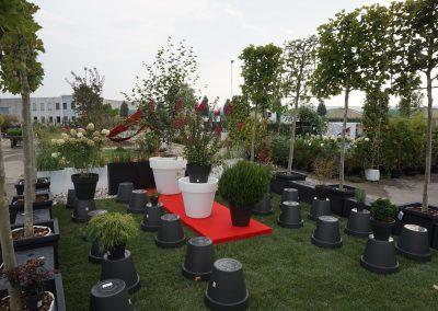 Concorso giardini Verdeggiando_121 Fashion Green Parade (7GKW3) DM Landscape Marica Succi e Domenico Dipinto