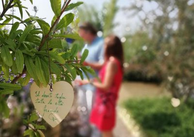 Concorso giardini Verdeggiando_127 Ode al giorno felice (ON78V) Ida Lia Russo