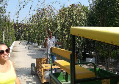 Concorso giardini Verdeggiando_149 NAUTILUS (DL4X4) Davide Cerruto – Walter Coccia – Emanuela Missanelli – Daniela Colombara