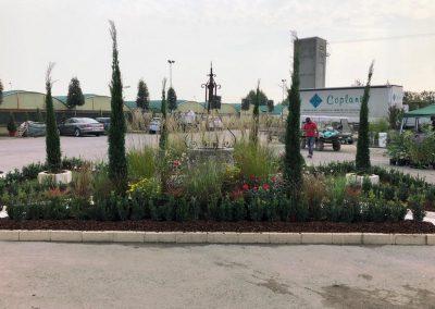 Concorso giardini Verdeggiando_152 Incontro (3539V) Rosanna De Florio