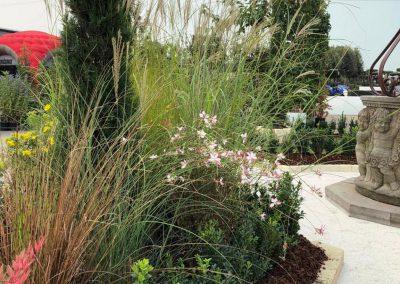 Concorso giardini Verdeggiando_159 Incontro (3539V) Rosanna De Florio