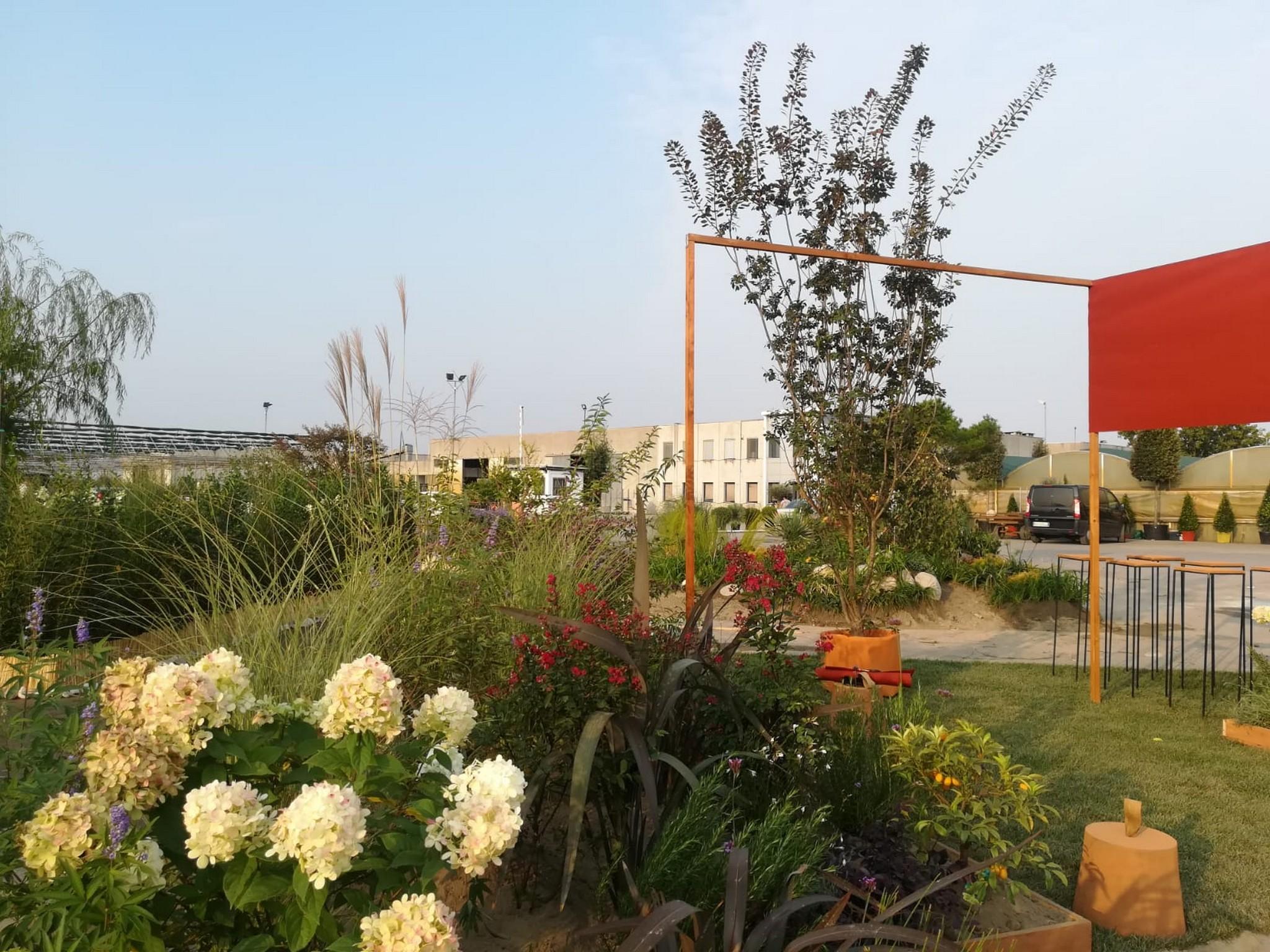 Concorso giardini Verdeggiando_167 Il valore del verde (BP277) Barbara Ponti