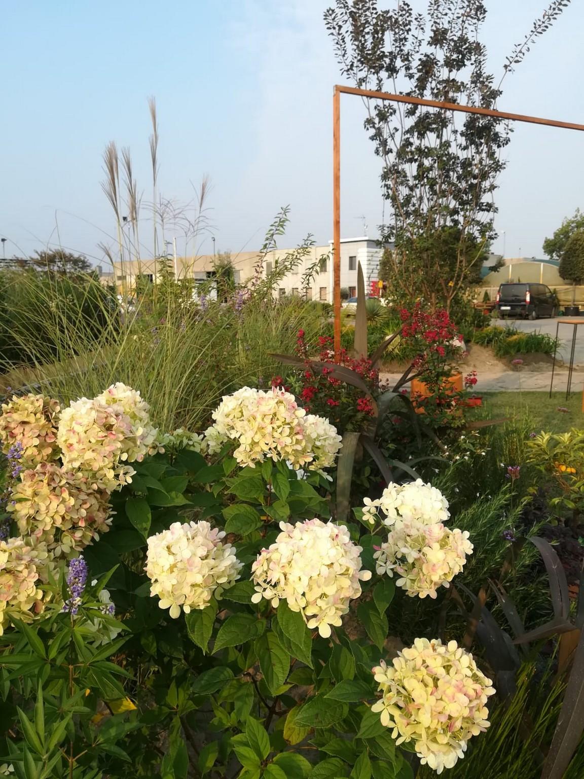 Concorso giardini Verdeggiando_168 Il valore del verde (BP277) Barbara Ponti