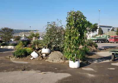 Concorso giardini Verdeggiando_20 NAUTILUS (DL4X4) Davide Cerruto – Walter Coccia – Emanuela Missanelli – Daniela Colombara