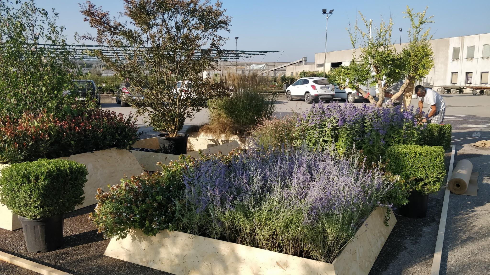 Concorso giardini Verdeggiando_22 Ode al giorno felice (ON78V) Ida Lia Russo