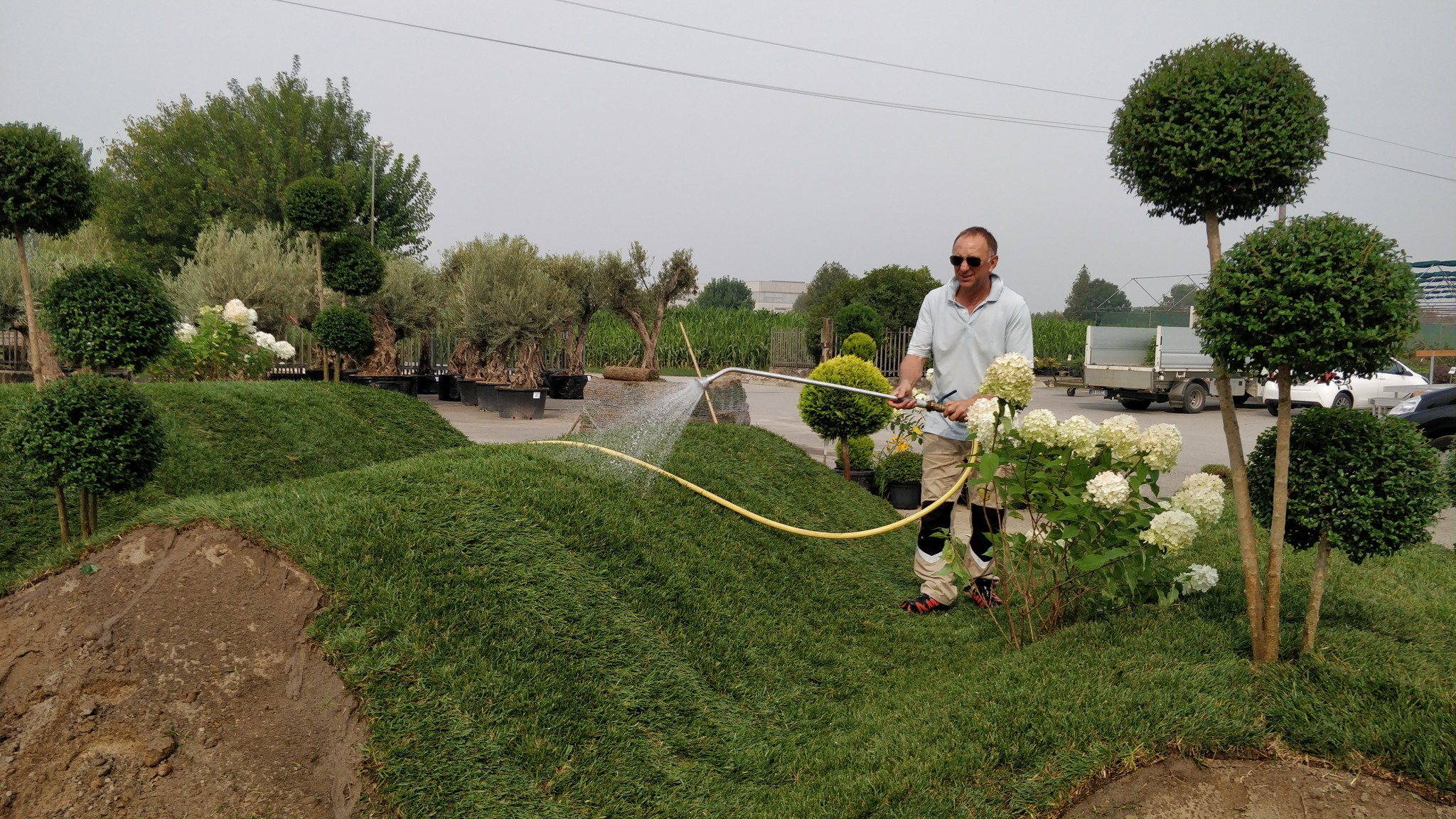 Concorso giardini Verdeggiando_27 In Onda (D79LE) D'Errico Loreta