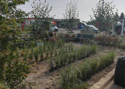 Concorso-giardini-Verdeggiando_28-Con-il-vento-tra-i-capelli-SNFT9-Stefano-Notari