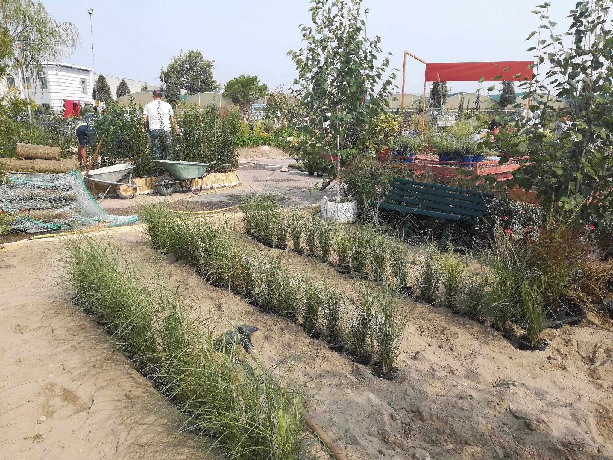 Concorso-giardini-Verdeggiando_30-Con-il-vento-tra-i-capelli-SNFT9-Stefano-Notari