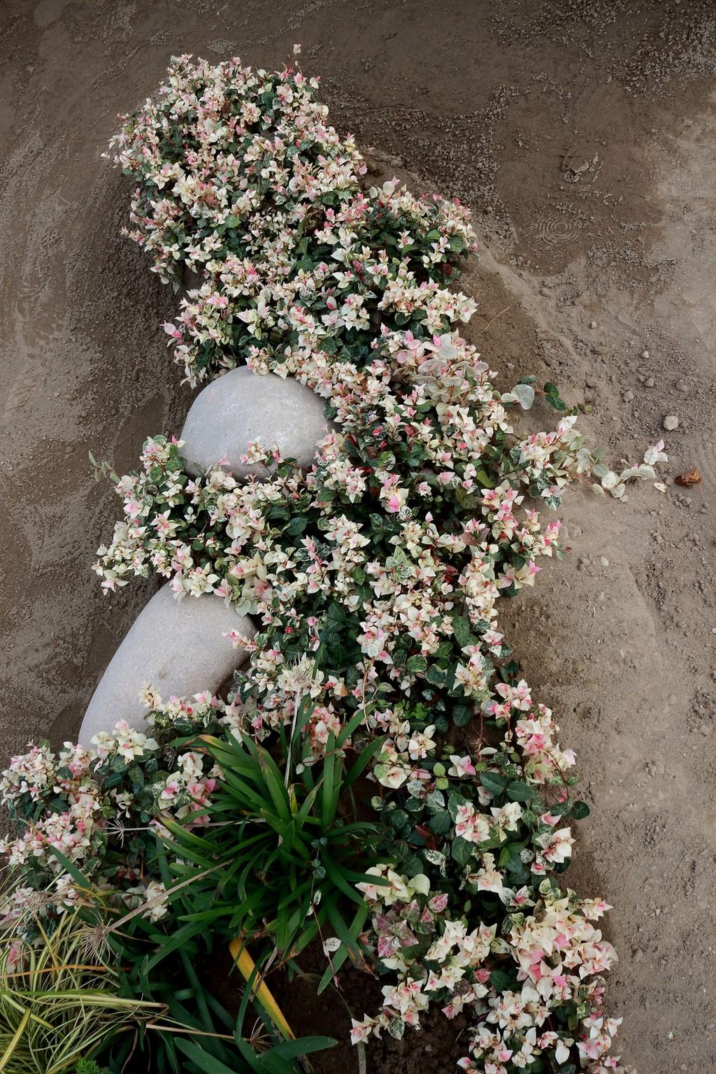 Concorso giardini Verdeggiando_35 NAUTILUS (DL4X4) Davide Cerruto – Walter Coccia – Emanuela Missanelli – Daniela Colombara