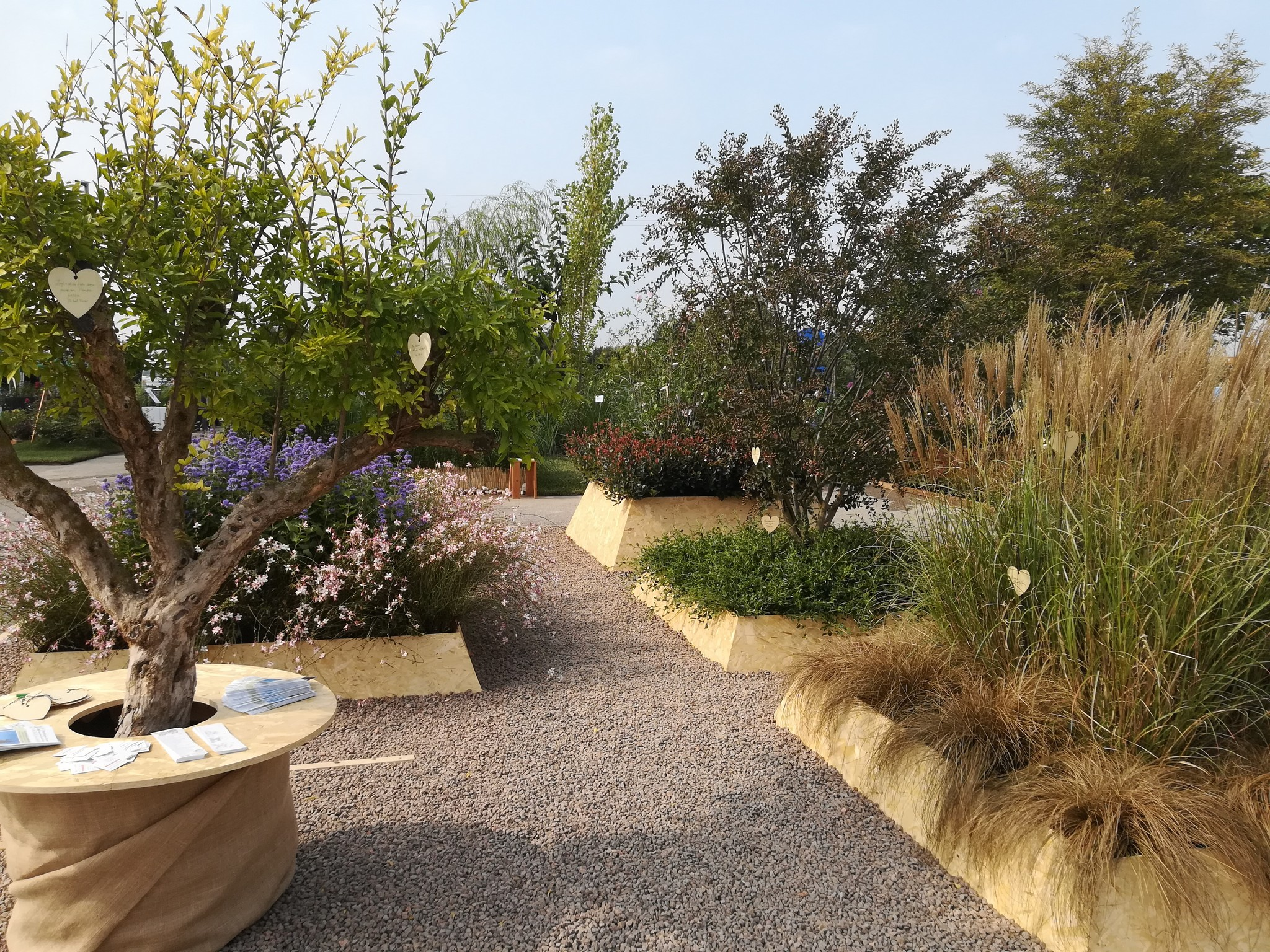 Concorso-giardini-Verdeggiando_37 Ode-al-giorno-felice-ON78V-Ida-Lia-Russo