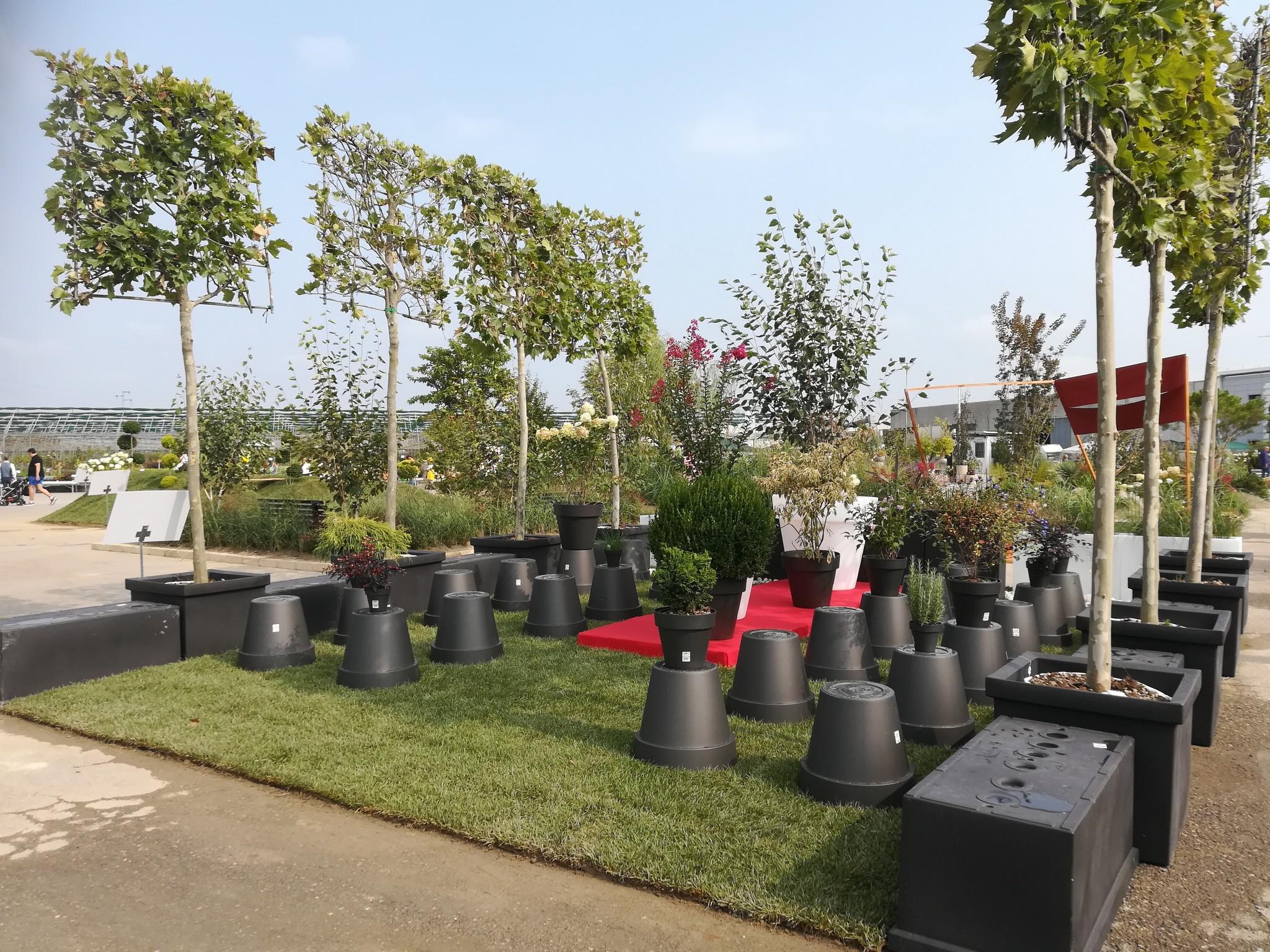 Concorso-giardini-Verdeggiando_43-Fashion-Green-Parade-7GKW3-DM-Landscape-Marica-Succi-e-Domenico-Dipinto
