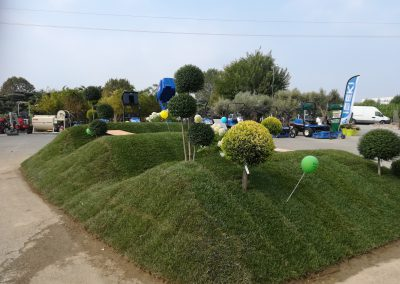Concorso-giardini-Verdeggiando_45-In-Onda-D79LE-D'Errico-Loreta