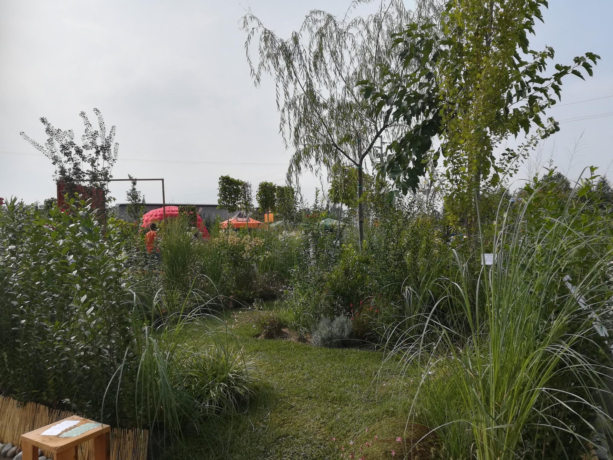 Concorso-giardini-Verdeggiando_48-Sentiero-italiano-HS194-Frontini-Giovanni-Hortus-Simplicium