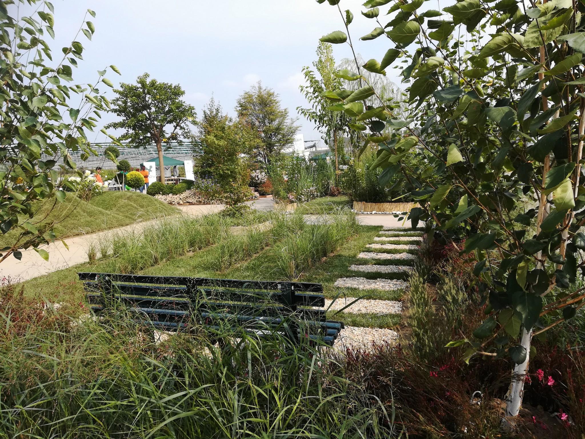 Concorso-giardini-Verdeggiando_52-Con-il-vento-tra-i-capelli-SNFT9-Stefano-Notari