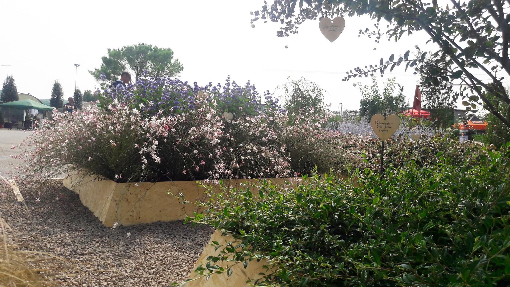 Concorso giardini Verdeggiando_53 Ode al giorno felice (ON78V) Ida Lia Russo