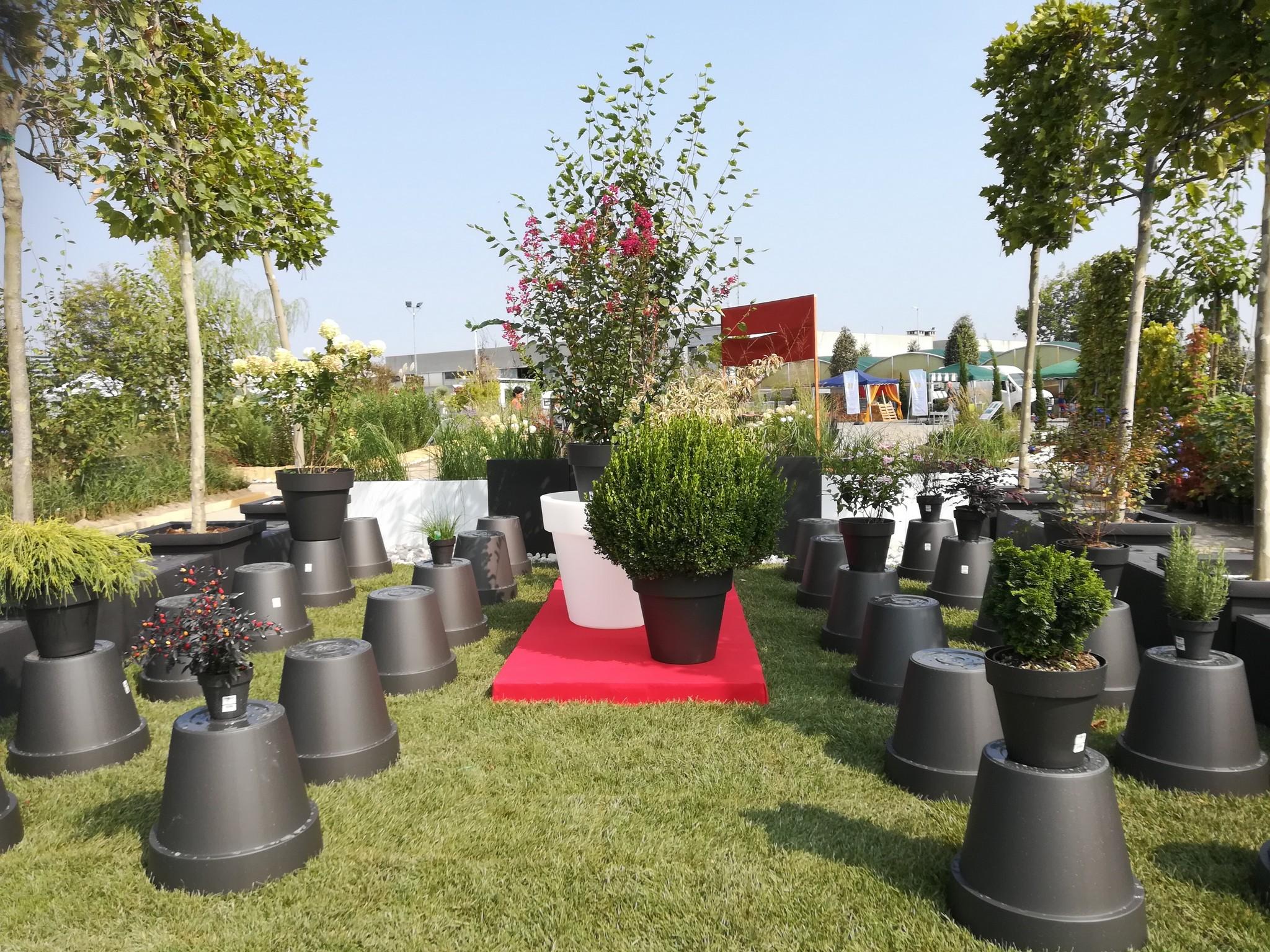 Concorso-giardini-Verdeggiando_54-Fashion-Green-Parade-7GKW3-DM-Landscape-Marica-Succi-e-Domenico-Dipinto