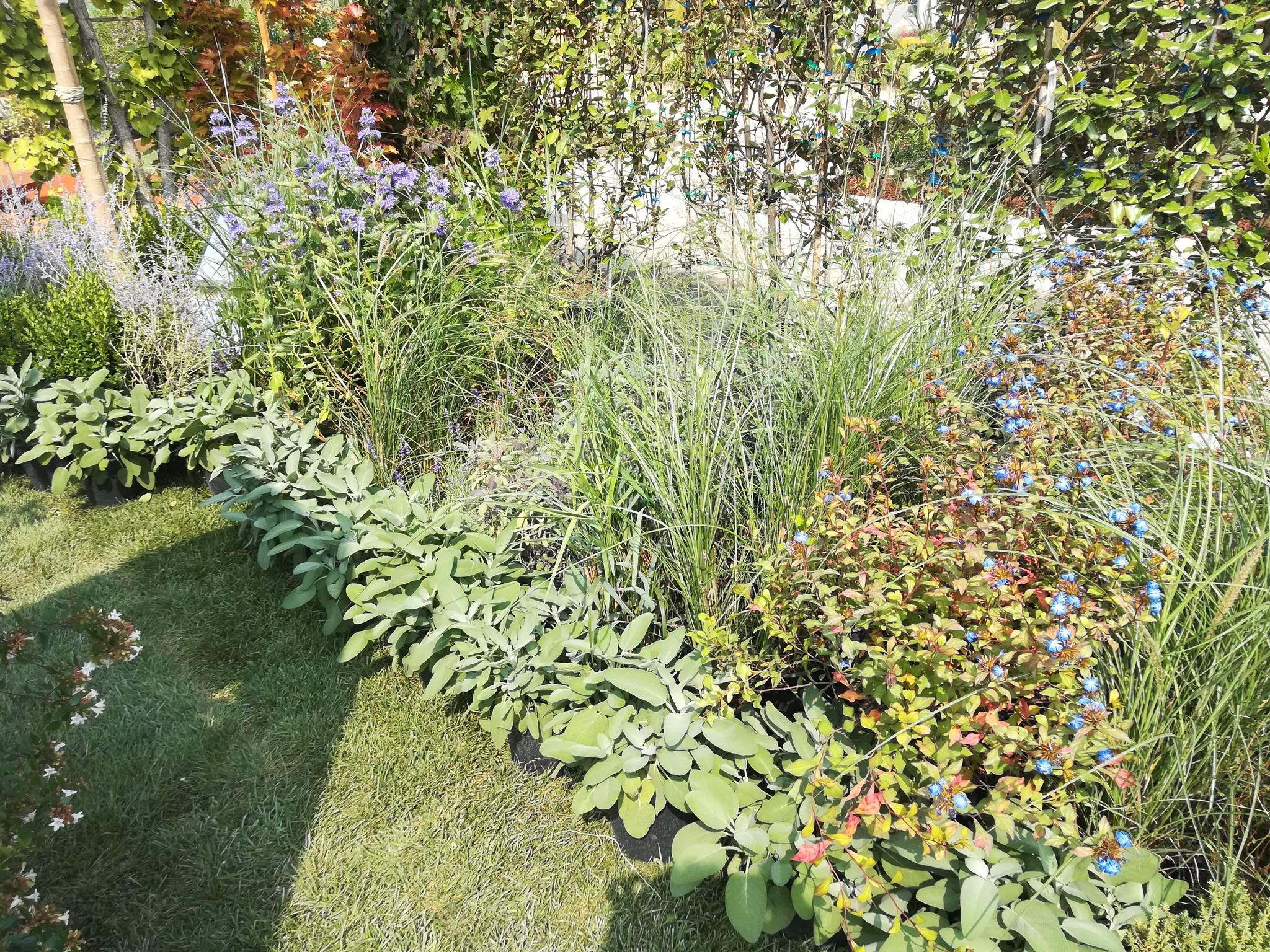Concorso-giardini-Verdeggiando_55-Il-giardino-è-il-paesaggio-è-la-casa-2LAND
