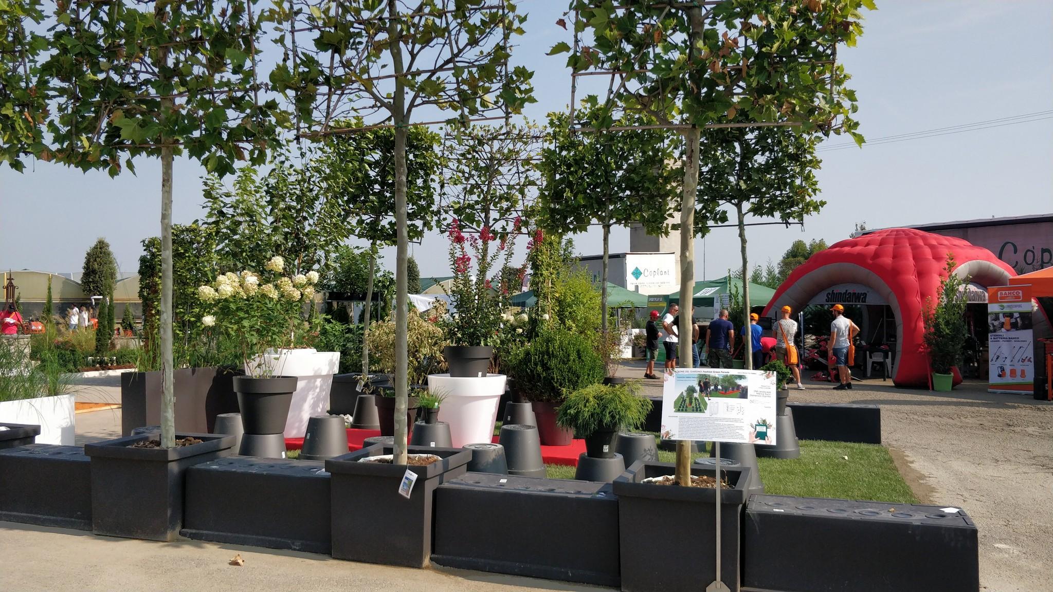 Concorso giardini Verdeggiando_61 Fashion Green Parade (7GKW3) DM Landscape Marica Succi e Domenico Dipinto