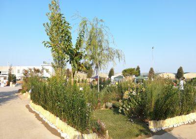 Concorso-giardini-Verdeggiando_73-Sentiero-italiano-HS194-Frontini-Giovanni-Hortus-Simplicium
