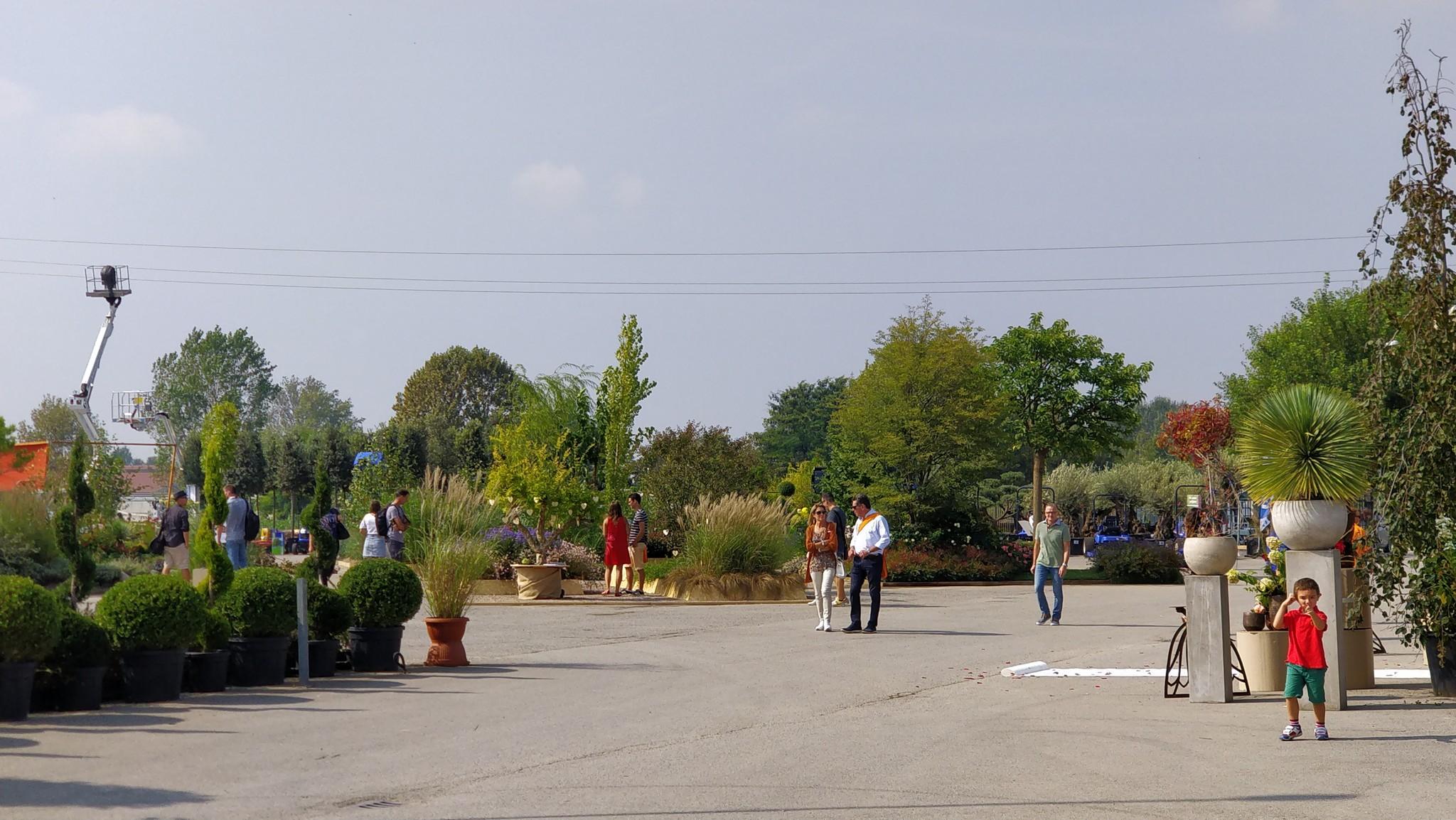 Concorso giardini Verdeggiando_75
