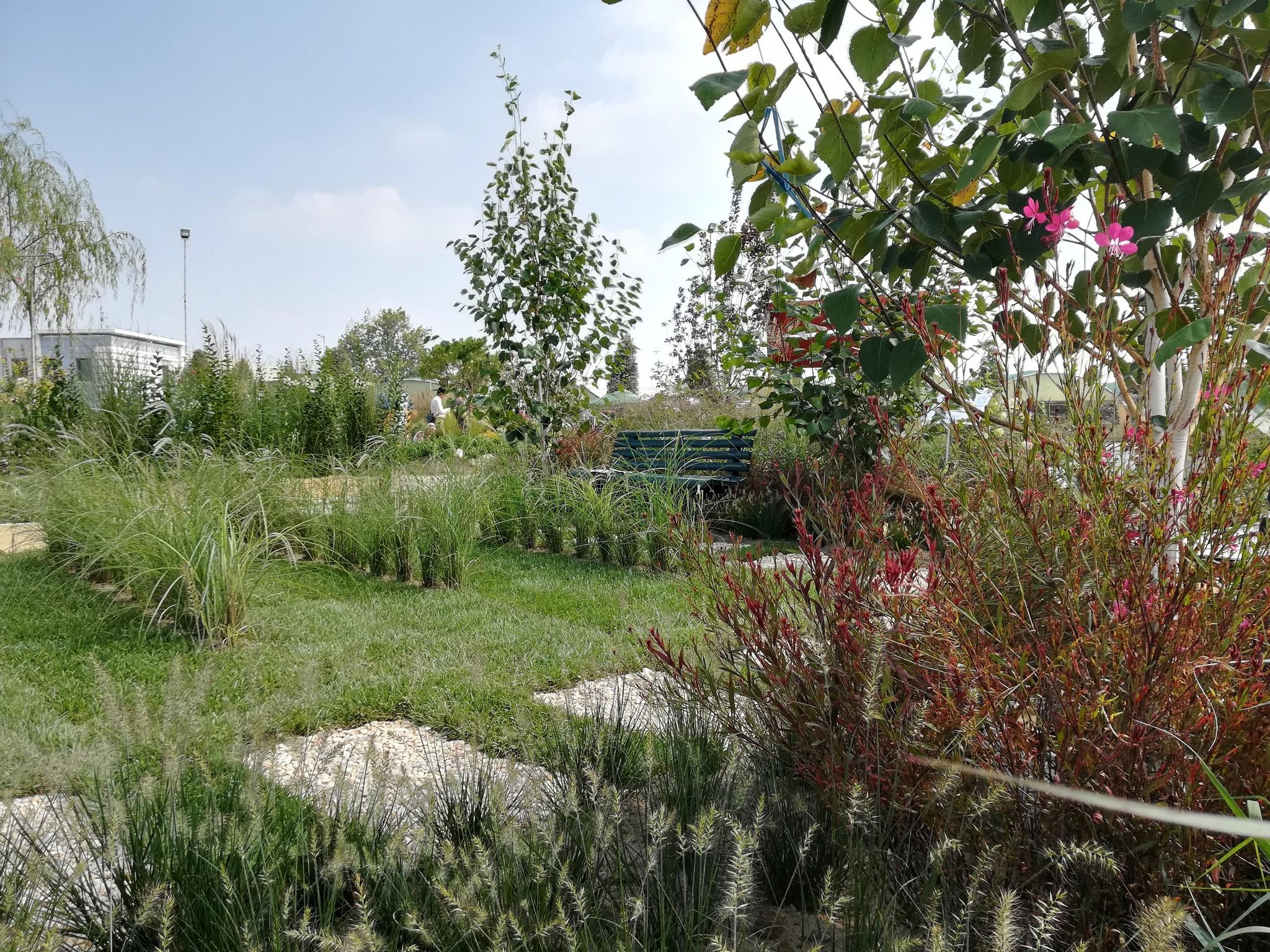 Concorso-giardini-Verdeggiando_77-Con-il-vento-tra-i-capelli-SNFT9-Stefano-Notari