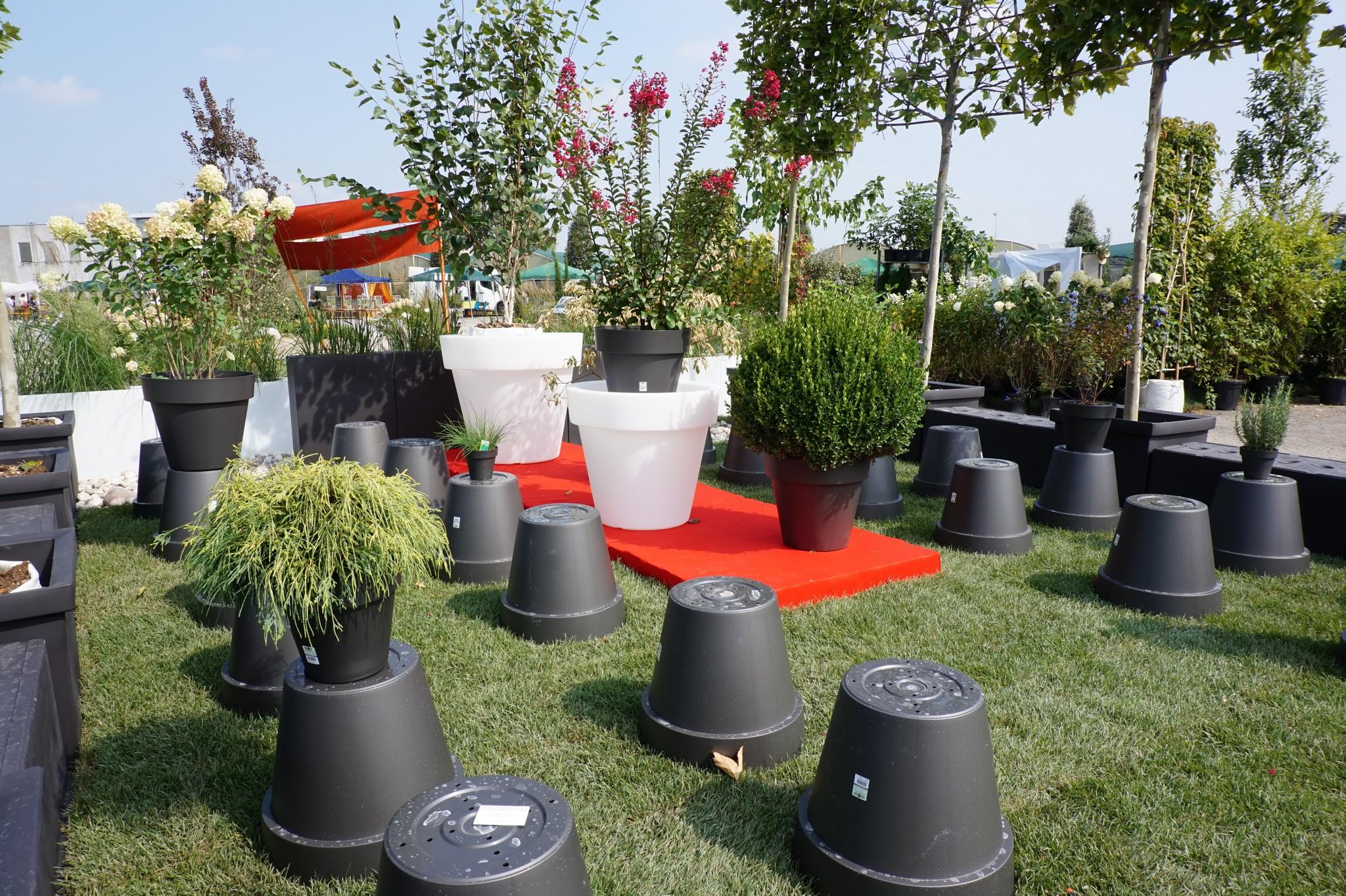 Concorso giardini Verdeggiando_78 Fashion Green Parade (7GKW3) DM Landscape Marica Succi e Domenico Dipinto