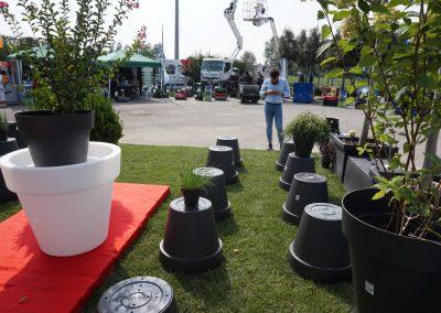Concorso giardini Verdeggiando_84 Fashion Green Parade (7GKW3) DM Landscape Marica Succi e Domenico Dipinto