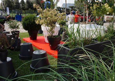 Concorso giardini Verdeggiando_94 Fashion Green Parade (7GKW3) DM Landscape Marica Succi e Domenico Dipinto