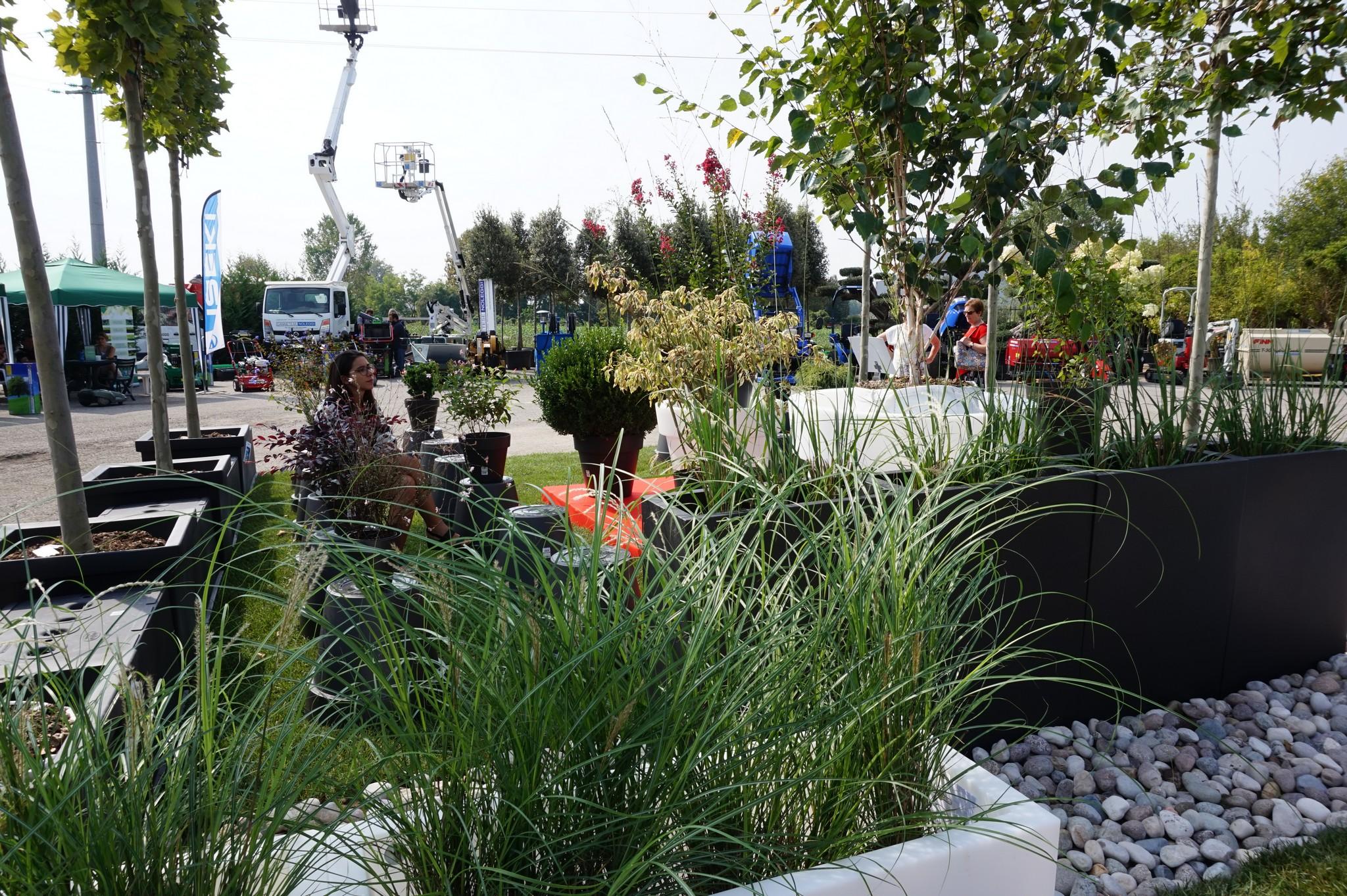 Concorso giardini Verdeggiando_95 Fashion Green Parade (7GKW3) DM Landscape Marica Succi e Domenico Dipinto