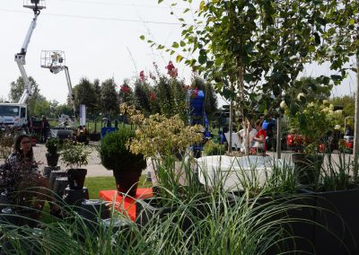 Concorso giardini Verdeggiando_96 Fashion Green Parade (7GKW3) DM Landscape Marica Succi e Domenico Dipinto