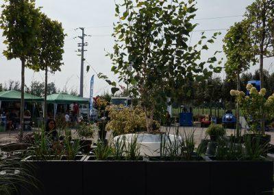 Concorso giardini Verdeggiando_99 Fashion Green Parade (7GKW3) DM Landscape Marica Succi e Domenico Dipinto