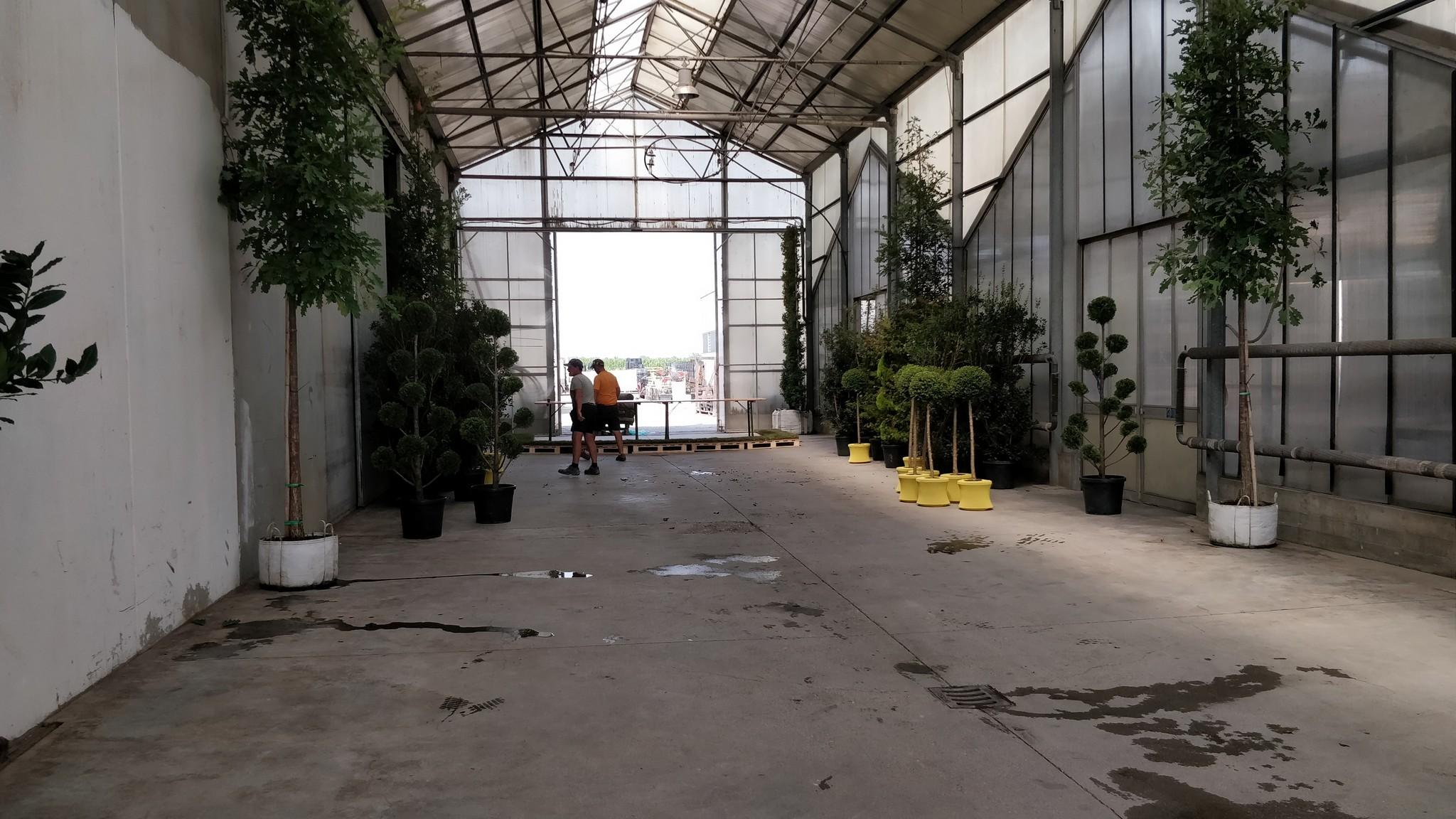 Verdeggiando 2018 Coplant_37